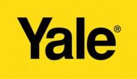 molas yale